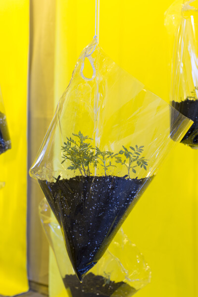 Mikala Dwyer The hanging garden of moonman marigolds, 2016; plastic, dirt, marigolds, rope, mylar, painted canvas, shadecloth, highpressure sodium lamps; dimensions variable; enquire