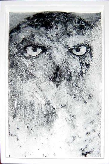 David Noonan Owl Snowy, 2003; gouache on paper; 37 x 24.5 cm; enquire