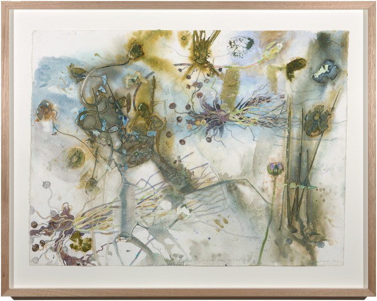 John Wolseley Buwakul, Rakay and Nymphaea Lily, 2015; watercolour and graphite on paper; 93 x 118 cm; enquire
