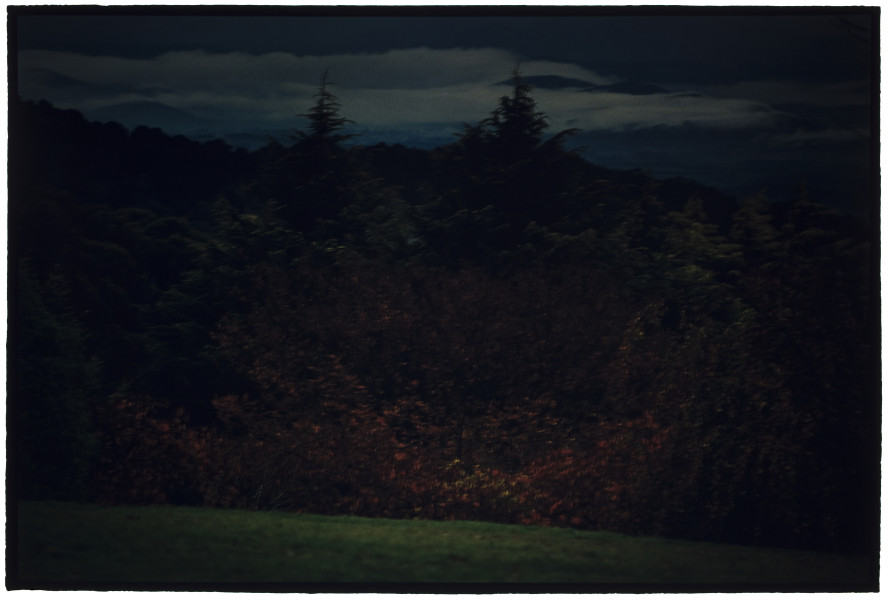 Bill Henson Untitled #12, 2007-08; CL SH600 N6; type C photograph; 127 x 180 cm; Edition of 5 + AP 2; enquire