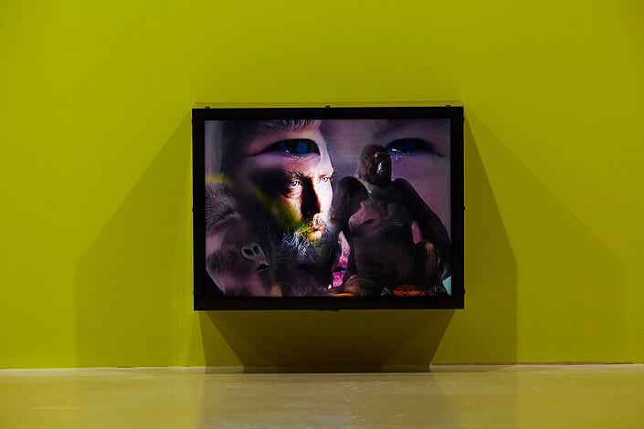 TV Moore Darwin Fairweather Baby & Me, 2014; Lightbox; 53 x 41 cm; enquire