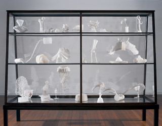 Fiona Hall Cell Culture, 2002; glass, metal, pvc, beads in vitrine; 158.1 x 250.2 x 90.2 cm; dimensions variable; enquire