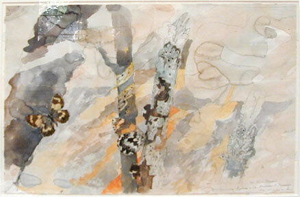 John Wolseley Elia Brown, Tasmania, 1996-00; watercolour. on paper; 39 x 60 cm; enquire