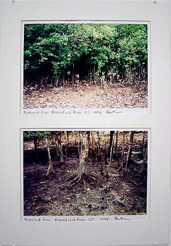 Destiny Deacon Postcard from Bloomfield River (1) (2), 1998; 2 colour laser prints; 21 x 29.7 cm; Edition of 15; enquire