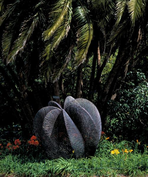 Bronwyn Oliver Palm, 1999; Copper; 190 x 180 x 180 cm; enquire