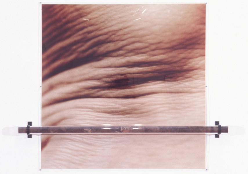 Julie Rrap Push and pull, 1994; perpex, steel, human hair, R3 colour print; 121 x 150 x 13 cm; enquire