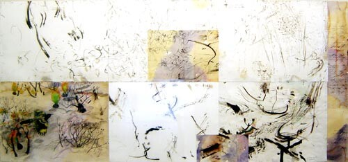 John Wolseley Rare and unaccountable sightings of the Embroidered Merops, 2002; Watercolour and charcoal of various Australian indigenous trees; 112 x 242 cm; (138 x 264 frame size); enquire