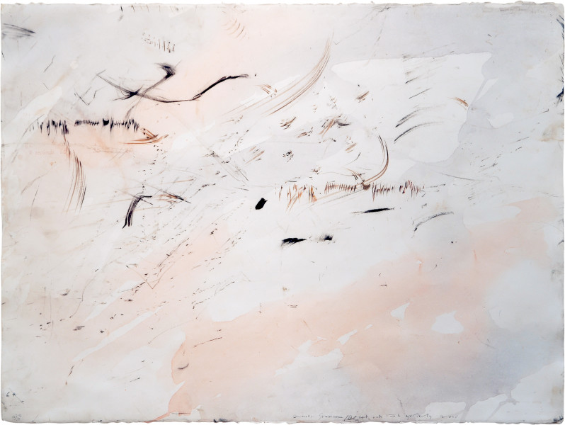 John Wolseley Spinifex/Minni Ritchi/Budgerigar, 2005; watercolour, graphite, carbonised wood on paper; 66 x 85.5 cm; enquire