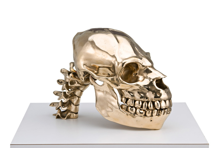 Patricia Piccinini Not Quite Animal (Transgenic Skull for the Young Family), 2008; bronze; 28 x 14.5 x 19.5 cm; Edition of 6 + AP 2; enquire
