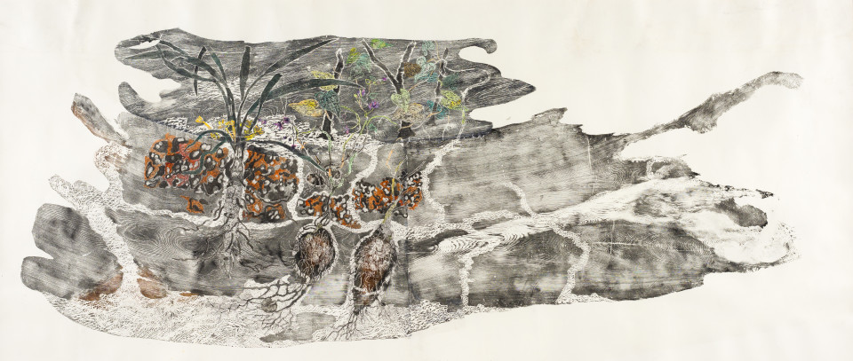 John Wolseley Dhunguruk, Butjuwutju/Mona and Djitama  - edible tubers of East Arnhem Land, 2015-18; woodcut from King Billy Pine with watercolour; 115 x 260 cm; Edition of 10; enquire