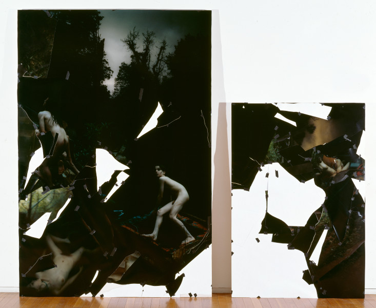 Bill Henson Untitled - diptych, 1996; Type c photographs, adhesive tape, pins, glassine; 275.1 x 185.7 cm; Part 2: 187 x 127.4; enquire