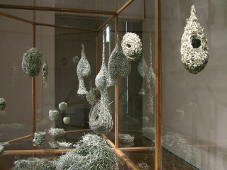 Fiona Hall Tender (detail), 2003-05; US dollars, wire, vitrines, vinyl lettering,; vitrine dimensions: 220 x 360 x 150cm; enquire