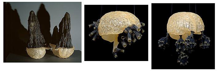 Fiona Hall Group of 3 #3 (termite nest 1, mud wasp nest 5, paper  wasp nest 3), 2007-08; polymer resin dimensions variable; Edition of 3; enquire