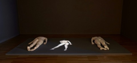 Julie Rrap in 'Shadow Catchers' at the AGNSW