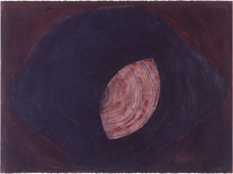 Fiona Foley Untitled II, 1998; charcoal, pastel and wax on paper; 56 x 76 cm; enquire