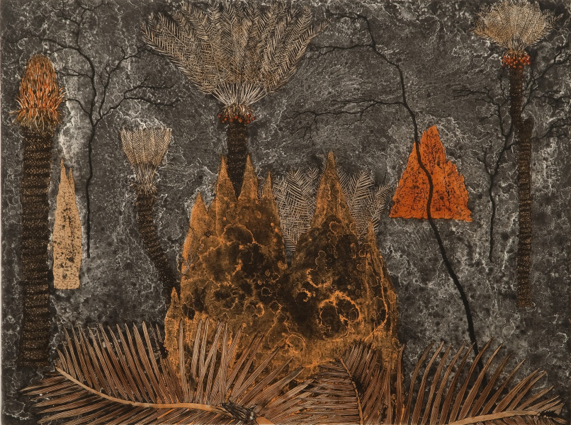 Fiona Hall Cycads - Ngathu, 2010; from the series Burning Bright; etching on Hahnemuhle cotton rag paper; 79.5 x 94 cm; Image size: 49 x 66cm; Edition of 41 + AP 5; enquire