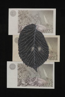 Fiona Hall When My Boat Comes In (detail), 2003; gouache on banknotes; dimensions variable; enquire
