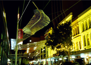 installation view; Bronwyn Oliver Big Feathers, 1999; Aluminium; 500 x 100 x 20 cm; enquire