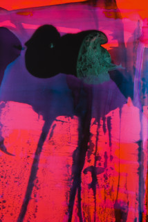 Dale Frank His anal polyps were a national emergency (detail), 2021; Interference colour pigment in Easycast, Epoxyglass, on Perspex; 160 x 120 cm; enquire