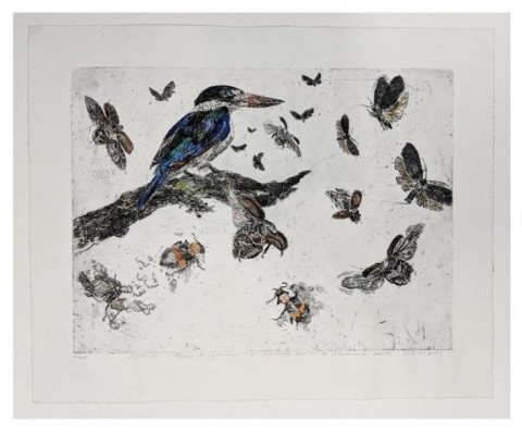 Limited-edition prints by John Wolseley