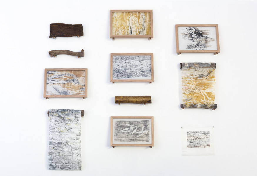 John Wolseley Boring Beetle and Moth Compendium, 2015; relief prints on gampi and mulberry paper and suspended wood elements; dimesnions variable; enquire