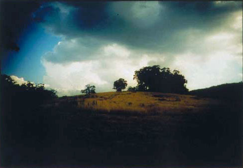 Bill Henson Untitled # 18, 1997-98; CL SH272 N23A; Type C photograph; 127 x 180 cm; (paper size) Image size: 104 x 154 cm; Edition of 5 + AP 2; enquire