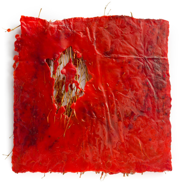 Kirtika Kain rupture, 2019; birch broom twigs, sindoor powder, wax; 50 x 52 cm; enquire