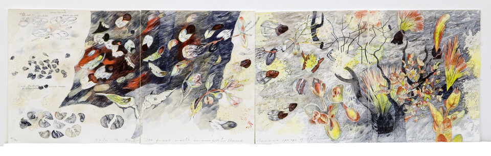 John Wolseley After the fire II - the fresh earth beams forth ten thousand thousand springs of life (Blake), 2003; colour lithographic print on Velin Arches paper; 33 x 116.5 cm; (overall unframed) 4 parts: each 33 x 32/ 33 x 28.5/33 x 28.5/ 33x 28.5; Edition of 30 + AP 3; enquire