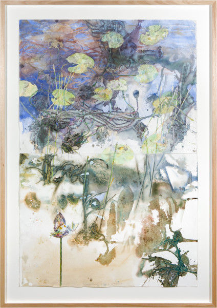 John Wolseley Nymphaea Lilies and Rakay, 2015; watercolour and graphite on paper; 172 x 121 cm; enquire