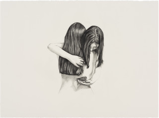Patricia Piccinini Inseparable (Welcome Swallow), 2020; graphite on paper; 57 x 76 cm; 72.5 x 91 cm (framed); enquire