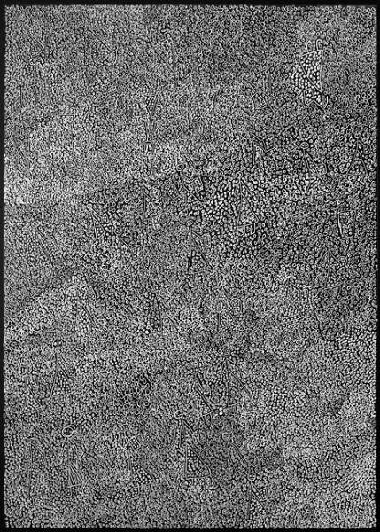 Nyapanyapa Yunupingu 51. Birrka'mirri 21, 2011; 1269-16 (Ac. 3.22); paint pen on clear acetate plastic; 83.5 x 59.5 cm; enquire