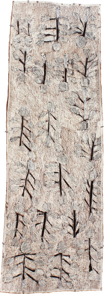 Nyapanyapa Yunupingu Dharpa, 2011; 4044W; natural earth pigments on bark; 166 x 59 cm; enquire