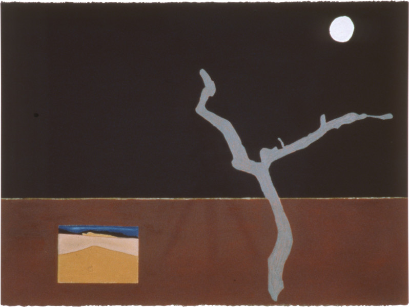 Fiona Foley Driftwood at Booral, 1990; pastel, ink and oil crayon on paper; 57 x 76.5 cm; enquire
