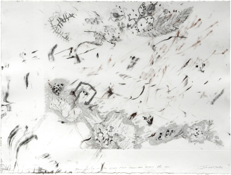 John Wolseley The sand palm burns and draws the sea, 2009; monoprint (carbon frottage with etching); 56 x 76 cm; enquire
