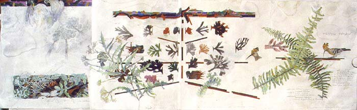 John Wolseley A history of ferns with hoopoe and hooded pitohui, 2000; watercolour on paper; 46 x 147 cm; enquire