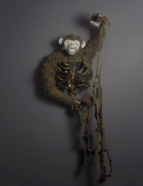 Fiona Hall Pan troglodytes / chimpanzee, Equatorial Africa, 2012; IUCN threat status: endangered
