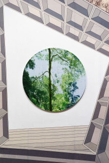 "installation view; Gary Carsley D.123 Gardens By The Bay, 2019-20; Satin UV retardant laminate over unique state Lambda Type ""C"" print adhered to 3 mm Dibond Polyhedra, 6 mm MDF Split battens; 55 x 55 cm; enquire"
