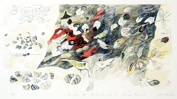 John Wolseley From the embers - Seed Flight, 2004; Lithograph printed in colour from five stones/plates on white Velin Arches paper 250gsm; 56 x 76 cm; papersize: 32 x 60 cm (image size),; Edition of 25 + AP 1; enquire