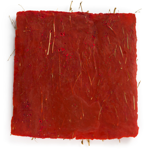 Kirtika Kain heart, 2019; birch broom twigs, sindoor powder, wax; 50 x 50 cm; Enquire