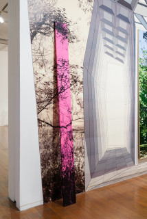 installation view; Gary Carsley Landscape Plank (Still Glides The Stream and Shall Forever Glide), 2020; Laser Print on 80gsm tinted paper (pink) applied to 19 mm thick dressed pine; 236 x 18.4 cm; enquire