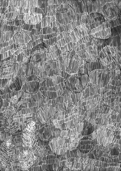 Nyapanyapa Yunupingu 33. Birrka'mirri 4, 2011; 4303D; paint pen on clear acetate plastic; 83.5 x 59.5 cm; enquire