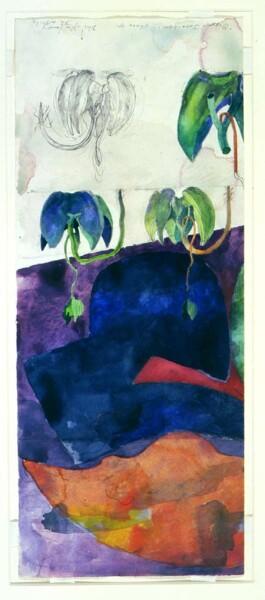 John Wolseley Dipterocarp germination, 1998; watercolour on paper; 56.7 x 23.5 cm; enquire