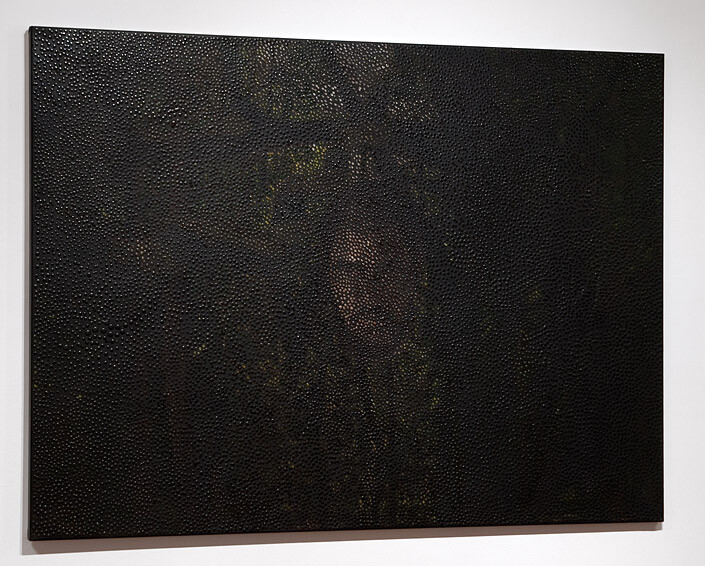 Daniel Boyd Untitled, 2011; oil and archival glue on canvas; 122.5 x 168 cm; enquire
