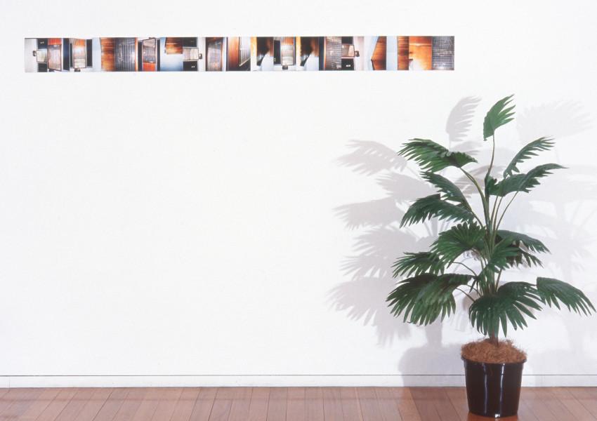 Justene Williams Mystery la la la!, 1994; colour photograph, plastic pot plant; dimensions variable; enquire