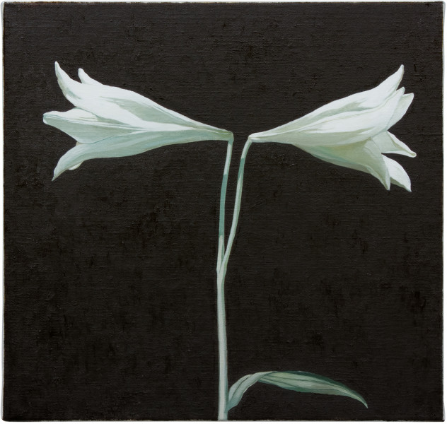 Glenn Sorensen Star Eyed, 2012; oil on linen; 38 x 40 cm; enquire