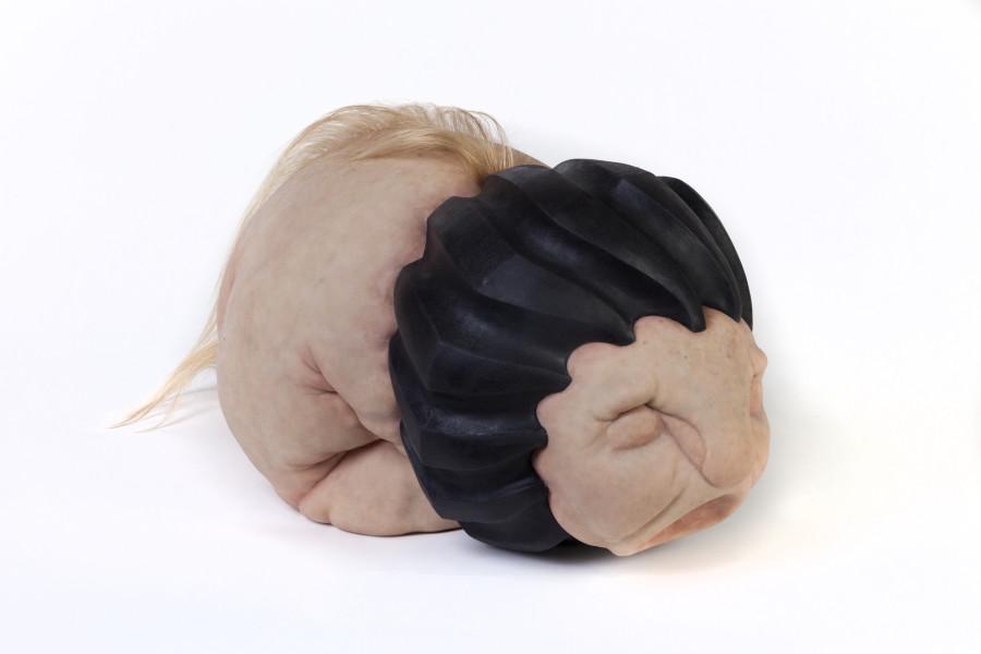 Patricia Piccinini Tyre Lion Cub, 2018; Silicone, fibreglass, hair; 32 x 64 x 33.7 cm; Edition of 6 + AP 2; enquire
