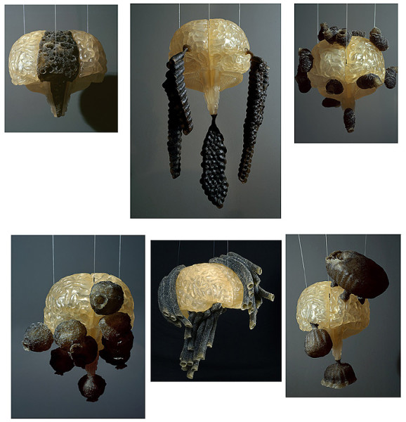Fiona Hall Group of 6 #1 ( mud wasp nest 1, paper wasp nest 1,mud wasp nest 2, mud wasp nest 3, mud wasp nest 4, paper wasp nest 2), 2007-08; polymer resin dimensions variable; Edition of 2; enquire