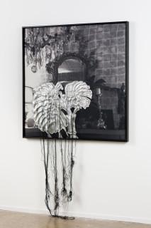 installation view; Caroline Rothwell #rothwellofficeplants, @roslynoxley9, 2017; ink on linen, Hydrostone, canvas, thread, metal leaf; 118.5 x 118.5 cm; enquire