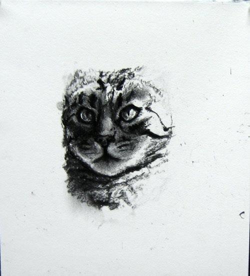 Louise Hearman Untitled #1068, 2004; charcoal on mount board; 28 x 25 cm; enquire