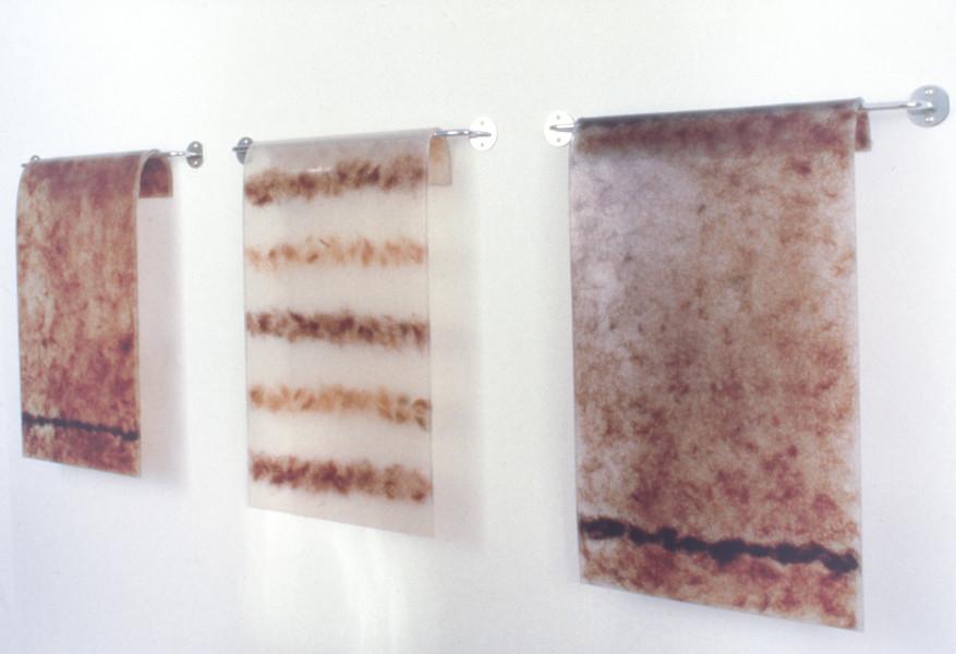 Julie Rrap Handtowels, 1995; silicon, rubber, human hair, metal railing; 60 x 210 cm; enquire